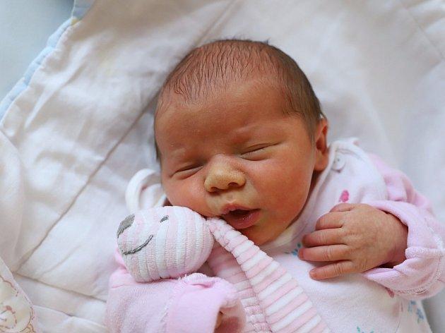 ELLEN MARŠÍKOVÁ je z Červeného Kostelce. Holčička spatřila světlo světa 19. listopadu 2017  v 19.38 hodin. Její míry byly  3060 g a 47 cm. Ze svého prvního děťátka se radují manželé Barbora a Radek.
