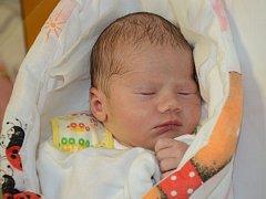 KRISTÝNA SEIDLOVÁ se narodila 5. prosince 2012 v 1:25 hodinu s váhou 2715 gramů a délkou 48 centimetrů. S rodiči Adélou Seidlovou a Leošem Jakubcem mají domov v obci Skršice.