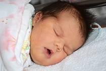 NIKOLA RUFFEROVÁ se narodila 22. ledna 2013 ve 13:55 hodin s váhou 4135 gramů a délkou 53 centimetrů. S rodiči Ivetou a Martinem, a s šestiletou sestřičkou Deniskou, mají domov ve Velkém Poříčí.