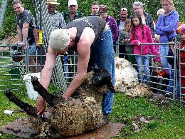 Ratibořické ovčácké slavnosti 2014.