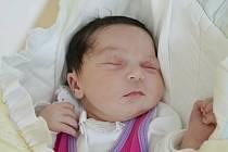 Hannah Sarpong z Náchoda se narodila 9. června 2020 v 10:30 hodin. Holčička vážila 3720 gramů. Z prvního děťátka se radují maminka Zlata Mikušíková a tatínek David Sarpong.