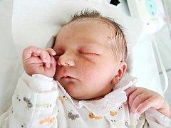 MAREK PAPŠ z Jaroměře je prvním děťátkem Evy Žilkové a Marka Papše.Narodil se 11. července 2017 v 8.23 hodin, vážil 3070 g a měřil 47 cm.