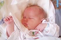 ONDŘEJ ŠTEJNAR se narodil 10.6. v 8.41 hodin rodičům Jaroslavě a Davidovi. Vážil 4,4 kg a měřil 52 cm. Bydliště má spolu se čtyřmi sourozenci v Broumově.