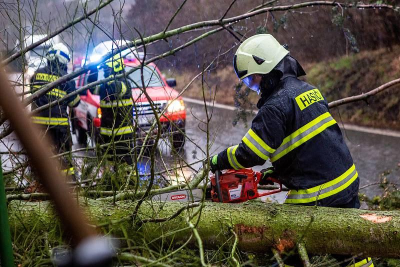 Orkán Sabine na Královéhradecku. Spadlý strom u obce Spy