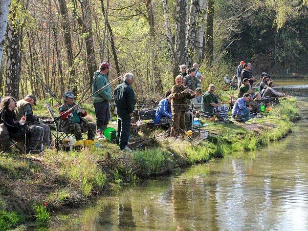 """K rybníku Krčmařík se sjelo 88 rybářů, aby zde předvedli svou šikovnost a tu svoji """"nejlepší"""" návnadu na devatenáctém ročníku rybářských závodů."""