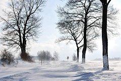 Letos již byla takto zasněžená a uzavřená silnice mezi Broumovem a Martínkovicemi.