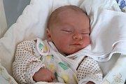 Nicolas Dlouhý z Doubravice je na světě! Narodil se 3.listopadu 2018 v 18,37 hodin, vážil 3260 gramů a měřil 49 centimetrů. Ze svého prvního děťátka mají radost manželé Monika a Jan.