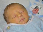 JAROSLAV ŠIROKÝ je prvním miminkem Petry a Ladislava ze Slavoňova. Chlapeček se narodil 10. října 2016 v 7.03 hodin, vážil 3085 gramů a měřil 49 centimetrů.