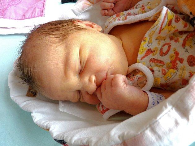 KATE ŠRŮTKOVÁ se narodila 19. srpna 2013 ve 13:18 hodin s váhou 2940 gramů a délkou 47 centimetrů. S rodiči Petrou a Jiřím Šrůtkovými mají svůj domov v České Skalici.
