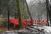 Dřevěný věšadlový most byl pod názvem Prinz Franz Josef´s Brücke l postaven v roce 1880 jako spojnice v tzv. Panské cestě náhradou za původní brod na řece Úpě. Samotná konstrukce mostu je dřevěná s dvojitým věšadlem, které je zakomponováno do dřevěného zá