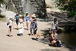 Návštěvnost v Adršpašsko-teplických skalách umírnilo o víkendu tropické počasí a možná i obavy z velkého množství turistů, kteří by první prázdninový víkend mohli zamířit právě do skal.