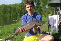 Jednou z ulolvených ryb byl i tento jeseter sibiřský, kterého chytil Jakub Exner.
