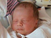 Marek Šefc z Police nad Metují je na světě! Chlapeček se narodil 28. ledna 2019 ve 22,15 hodin, vážil 3040 g a měřil 49 cm. Ze svého prvního potomka se radují rodiče Michaela a Jakub Šefcovi.