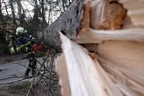 """Ze zásahu hasičů  po vichřici, která """"profičela"""" Novoměstskem a dalšímí čásmi Náchodska."""