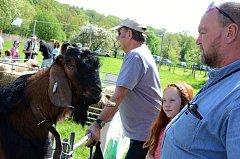Den Země aneb Ratibořické ovčácké slavnosti přilákaly v sobotu do Babiččina údolí tisíce návštěvníků.
