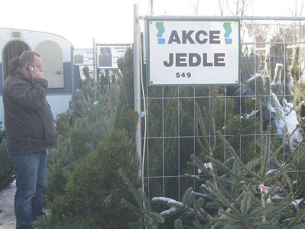 Před koupí vánočního stromku se vyplatí projít si více prodejních míst, rozhlédnout se a posoudit, kde je jaká cena a co za ni prodejce nabízí.