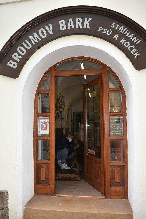 První klientkou salonu Broumov Bark byla osmiletá fenka Apache, která si nechala vyčesat starou zimní srst, zastřihnout drápky, ostříhat, vyčistit dásně i uši.