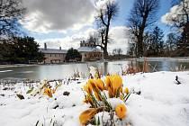 První jarní den roku 2021 v Ratibořicích.