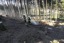 Hořela hrabanka po těžbě dřeva i okrasný plot.