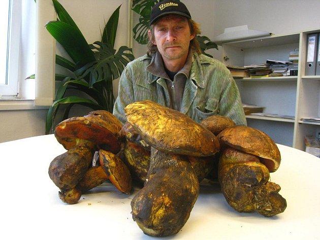 Češi jsou ve srovnání s jinými národy opravdu vášniví houbaři. Proto víkendovou vláhu mnozí v nich přivítali s nadějí, že opět začnou růst.