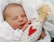 JOSEFÍNA PETERKOVÁ ze Zlíčka poprvé vykoukla na svět 13. listopadu 2017 v 9.35 hodin. Holčička vážila 3140 gramů a měřila 49 centimetrů. Radují se z ní rodiče Barbora Krtičková a Tomáš Peterka i pětiletá sestřička Sára.