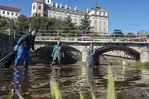 Nejproblematičtější úsek Stěnavy dobrovolníci zbavili zhruba sto kilogramů smetí, které do řeky nepatří.