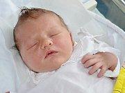 JAN CVEJN z Velkého Poříčí se narodil 25. července 2017 v 8.59 hodin rodičům Zuzaně a Michalovi Cvejnovým. Chlapeček vážil  3550 gramů a měřil 50 centimetrů. Doma má sestřičky Michalku (3 roky) a Kristýnku (22 měsíců).