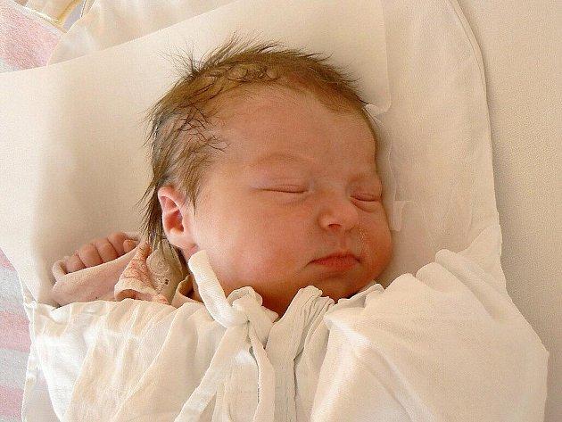 ALICE ŠPREŇAROVÁ se narodila 13. listopadu 2011 v 17:18 hodin s délkou 50 cm a váhou 3160 g. S rodiči Katkou Tošnarovou a Martinem Špreňarem má domov v Hejtmánkovicích. Na brášku se těší i Martin (11).