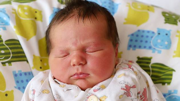 DANIEL HALAMKA ze Zvole poprvé vykoukl na svět 23. října 2017 ve 3.05 hodin. Jeho míry byly 4230 gramů a 52 centimetrů. Rodiče se jmenují Karolina Halamková a Miroslav Halamka, doma se na Danečka těšili také sestřička s bráškou.