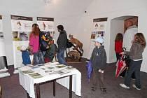 Foto z výstavy v Bruntálu.