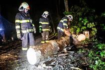 Popadané stromy přes silnici museli odklízet hasiči.