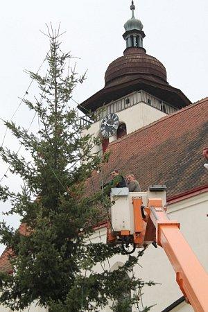 Vánoční strom vNovém Městě nad Metují.