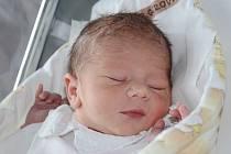 NELA BERGEROVÁ se narodila 8. srpna 2013 ve 14:33 hodin s váhou 2900 g a délkou 48 cm. S rodiči Denisou a Lukášem a se sestřičkou Michalkou (3 roky) bydlí v Náchodě.