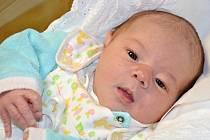 ANTONÍN PETR přišel na svět 6. ledna 2016 v 7.14 hodin. Narodil se mamince Denise a tatínkovi Vladimírovi z Velkého Poříčí. Chlapečkova váha byla 3880 gramů a měřil 50 centimetrů.