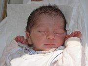 ROMAN JANIČO se narodil 8. září 2016 v 8.51 hodin, vážil 2710 gramů a měřil 47 centimetrů. S rodiči Blankou Janičovou a Romanem Čipčalou jsou z Jaroměře.