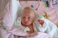 Bibiana Volhejnová z Vernéřovic je na světě! Holčička se narodila 7. října 2019 v 18,41 hodin, vážila 3780 gramů a měřila 49 centimetrů. Radují se z ní rodiče Zuzana a Ladislav Volhejnovi i sourozenci Michaela (10 let), Petr (9 let) a Veronika (6 let).