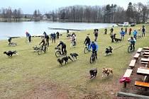 MUSHEŘI se společně se psy vydali na jarní jízdu, která vedla v okolí červenokosteleckého rybníka Brodský.