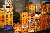 Policisté u obou mužů doma, i na různých dalších místech, provedli domovní prohlídky, a našli dohromady kolem sedmi set plastových pekárenských přepravek.
