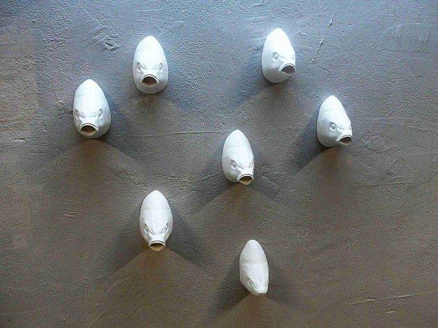 Doskočil v Hradci Králové spravuje galerii Podchod, kde ve výkladních skříních vystavují různí autoři. Ještě nedávno je zdobily bílé rybí hlavy.