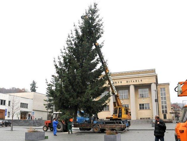 Hronovské náměstí už zdobí vánoční strom.