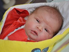 MAGDALÉNA KARBANOVÁ se narodila 7. března 2016 ve 20.13 hodin. Její míry byly 3495 gramů a 51 centimetrů. S maminkou Irenou a tatínkem Pavlem bydlí v Jaroměři, kde se na sestřičku těšil i osmiletý Tomáš.