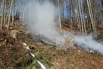 Čtyři jednotky hasičů byly zalarmovány kvůli požáru vlesním porostu vkatastru obce Stárkov. Vmístě bylo ohlášené pálení, které se ovšem rozhořelo a kvůli větru se požár rychle šířil.