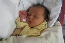MAGDALENA HEJDOVÁ se narodila 17. září 2011 v 17:47 hodin rodičům Anetě a Jakubovi. Měřila 51 centimetrů a vážila 3,74 kilogramu. Rodina je z Červeného Kostelce.