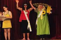 Léto je léto – to je název maškarního bálu, který připravili českoskaličtí ochotníci z divadelního souboru Maska.