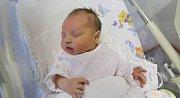 NIKOLA ŠEDIVÁ ze Zdoňova se narodila 8. října 2017 v 5.59 hodin. Holčička vážila 3335 gramů a měřila 50 centimetrů. Rodiče Andrea Křížová a Zdenek Šedivý mají doma ještě čtrnáctiměsíčního chlapečka Radimka.