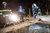 Dobrovolní hasiči z Nového Města nad Metují společně s profesionálními hasiči z Dobrušky odstraňovali spadlý strom na silnici z Nového Města nad Metují směrem na Zákraví.