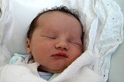 VOJTĚCH ŠILINEK z Jaroměře se narodil 4. července 2017 v 10.39 hodin. Chlapeček vážil 4200 gramů a měřil 51 centimetrů. Radují se z něho rodiče Lucie a Vláďa a sedmiletý bráška Štěpán.