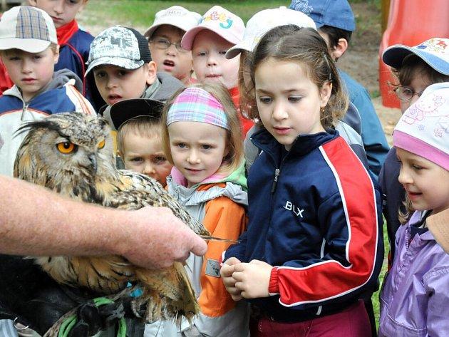 Děti z MŠ ve Velkém Poříčí obdivovaly na zahradě školky dravce.