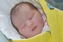 ROZÁLIE ŽĎÁRKOVÁ se narodila 8. července 2016 v 01.12 hodin. Holčička vážila 3100 gramů a měřila 48 centimetrů. S rodiči Barborou a Pavlem bydlí v Pohoří.