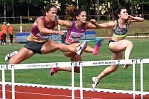 KAŽDOROČNĚ se pořadatelé Velké ceny snaží přilákat špičkové české i zahraniční atlety včetně reprezentantů. A letošní jubilejní 40. ročník rozhodně nebude výjimkou.